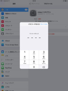 33_dejimono_sim