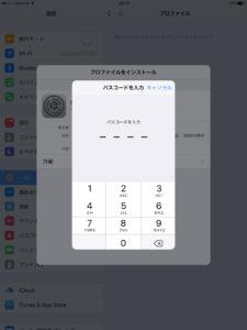 42_dejimono_sim